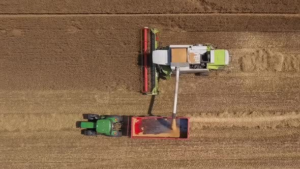 Thumbnail for Combine Harvester in Action