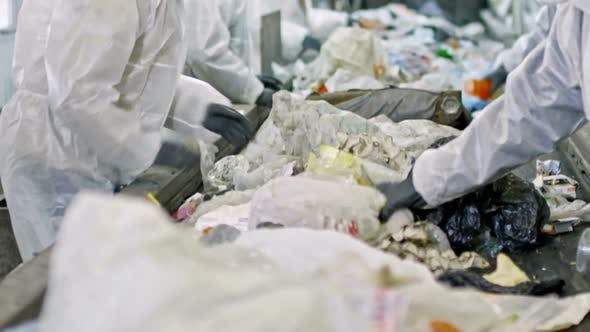 People Sorting Waste at Recycling Facility