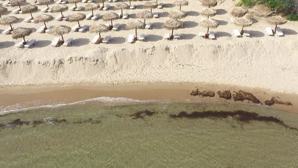 Aerial view of a beach in the summer