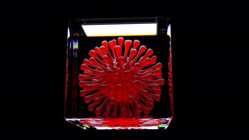 Science Metaphor Virus Coronavirus Infection Inside Lab Cell
