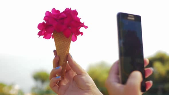 Woman with Mobile Taking Picture of Cone Flower Bouquet