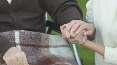 Woman Holding Hand of Patient in Wheelchair, Volunteer Program, Charity Concept
