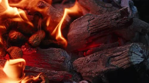 Barbecue Coal Fire Flames And Ashes 7