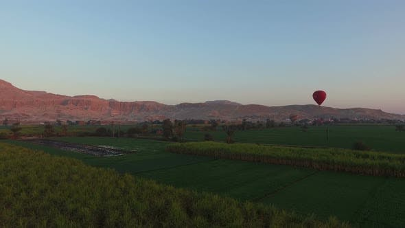 Thumbnail for Hot air balloons flying over the fields in Luxor at sunrise