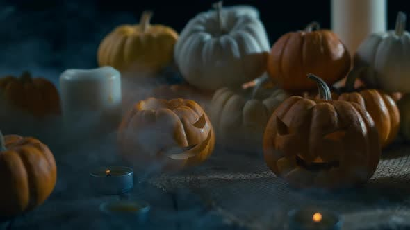 Thumbnail for Mystic Fog Halloween Pumpkins