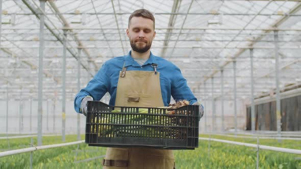 Thumbnail for Portrait of Gardener with Box in Indoor Plant Nursery