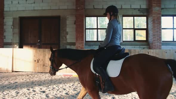 Thumbnail for Young Woman Sitting on Horseback and Riding on Covered Sandy Arena Having Practice