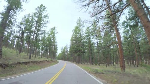 POV point of view -Driving on small road near the mountain creek in rural area of Western Colorado.