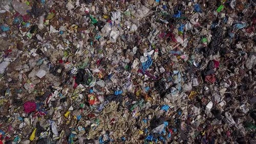 Waste Shows Consumption Scope