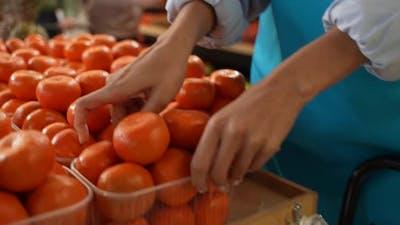 Multinational Buyers Choosing Pineapple in Store