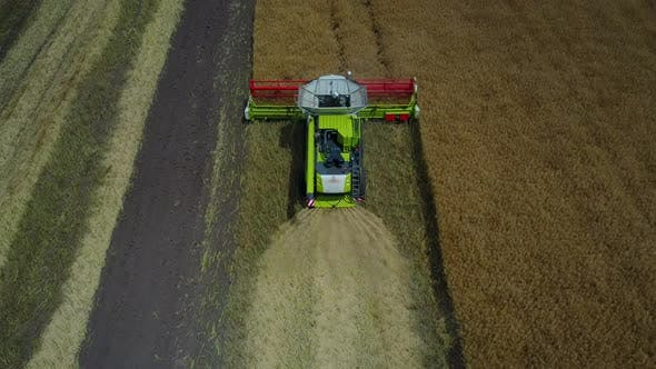 Thumbnail for Combine Harvesting the Field