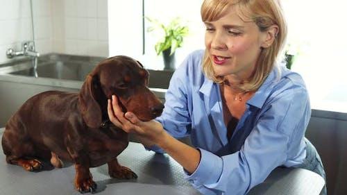 Der Besitzer spricht mit dem Hund