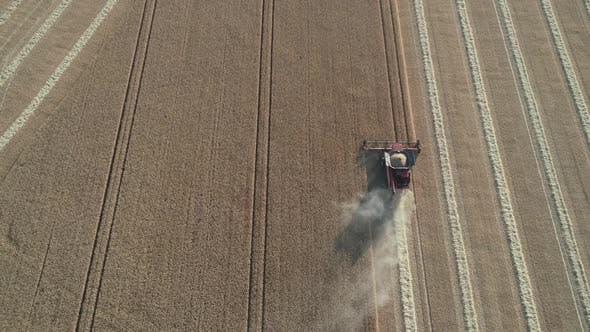 Harvest Aerial