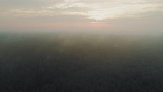 Thumbnail for Morning smog in the bald, flying over the trees