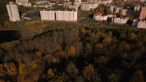Flight over the autumn park. Park on the shore of a large lake.