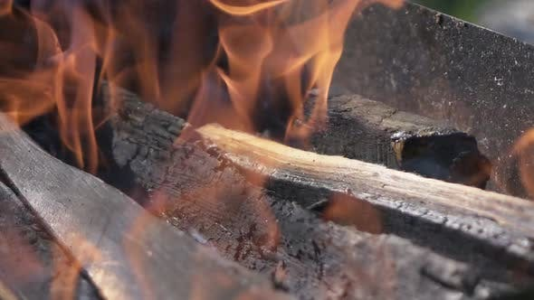 Thumbnail for Wood Burn in Brazier