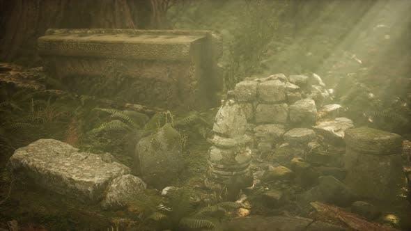 Thumbnail for Ruinen der antiken Stadt im Kiefernwald