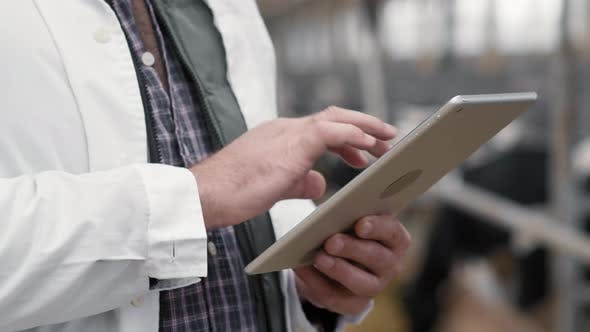 Hands of Man Using Tablet at Cattle Farm