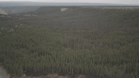 Aerial helicopter flyover of sparse tundra and bare forest, drone footage
