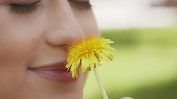 Woman Smelling Dandelion Enjoying Summer Day Outdoors Cropped
