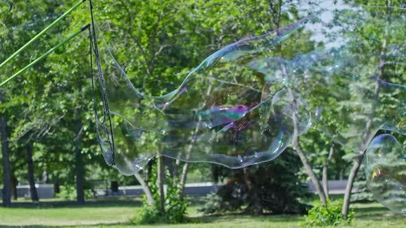 Cover Image for Man Blowing Giant Soap Bubble at Performance for Kids in City Park