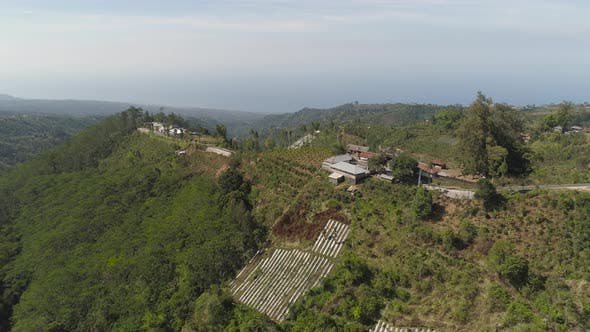 Thumbnail for Mountain Landscape Farmlands and Village Bali, Indonesia