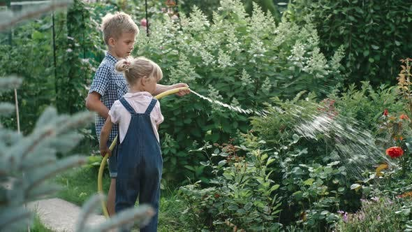 Cover Image for Brother and Sister Helping Watering Garden with Hose
