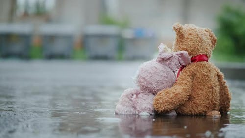 Two Friends - a Hare and a Bear Cub Are Sitting on the Asphalt in the Rain