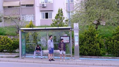 Young Man Bus Stop