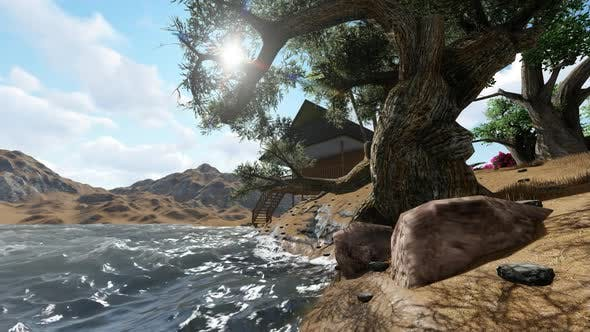 Thumbnail for Sea water under a big tree