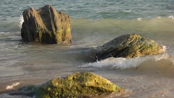 Sea Waves and Stones.