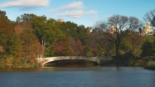 Central Park Lake in the Fall
