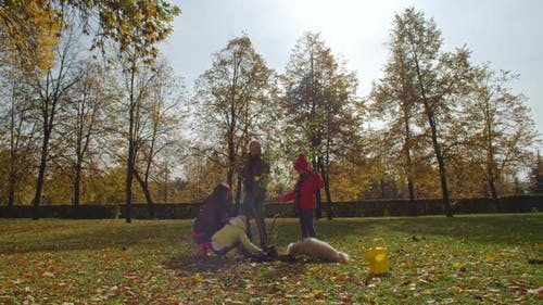 Family Planting Tree Sapling