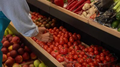 Fresh Organic Vegetables and Fruits on Store Stand