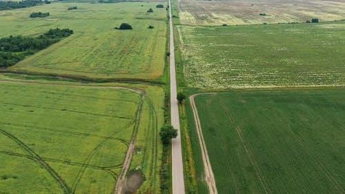 Asphalt Highway Through Green Summer Field