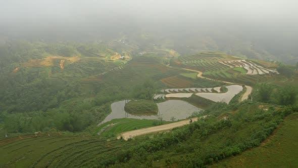 Terraced Rice Paddies In Northern Vietnam