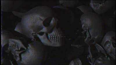 Skulls Background Vhs