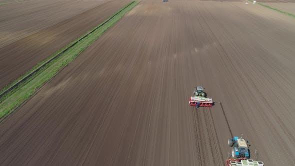 Thumbnail for Growing Salad Farm Field