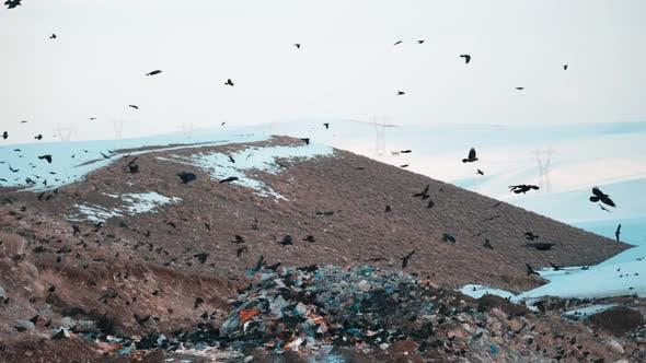 Big Heap Of Trash Polluting Atmosphere