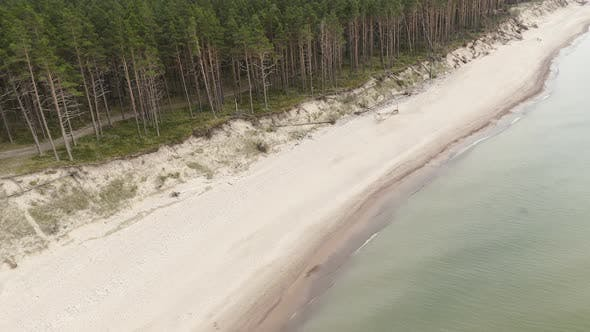 Thumbnail for Forest Beach at Baltic Sea Bank