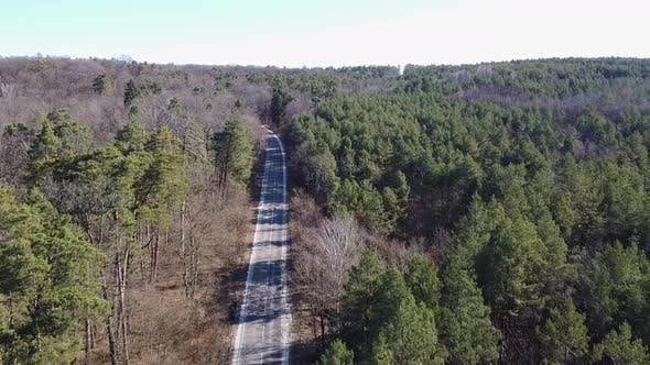 Thumbnail for Aerial Country Road in Forest in the Evening at Twilight