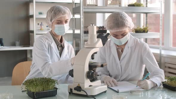 Thumbnail for Two Female Biologists Working with Microscope in Laboratory