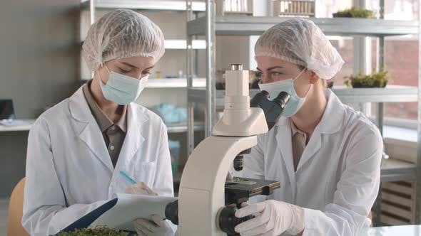 Thumbnail for Two Female Colleagues Working Together in Laboratory
