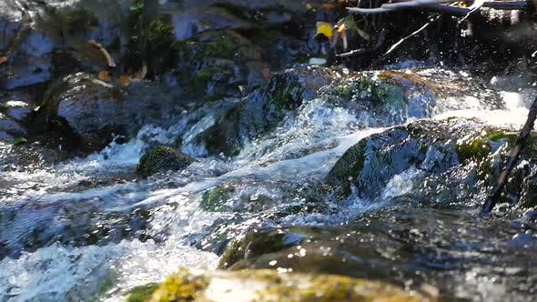 Thumbnail for Close Up Showing Water Rush Down Small Rapids Beside Rocks
