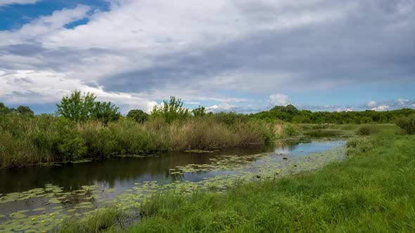 Time-lapse of the clouds moving high in blue sky. Yellow water Lilies on the river