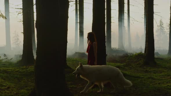 Thumbnail for Girl walking in the forest with a dog