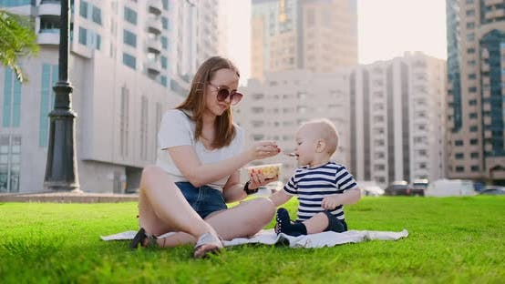 Cover Image for Young Mom with Baby Sitting on the Grass in the Park Eating Lunch