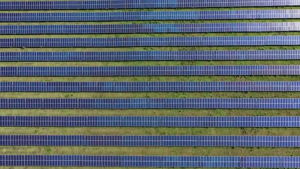 Cover Image for Solar Panel Plant