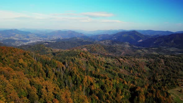 Thumbnail for Amazing Aerial View on the Autumn Forest