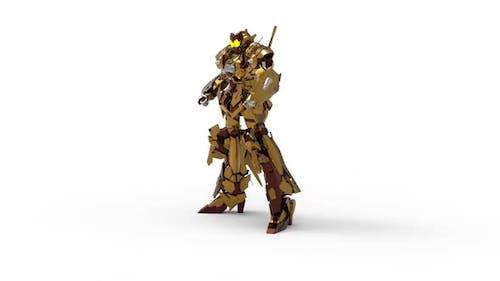 Full armor melee combat robot